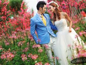 维纳斯婚纱摄影公司