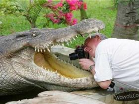 野外摄影师